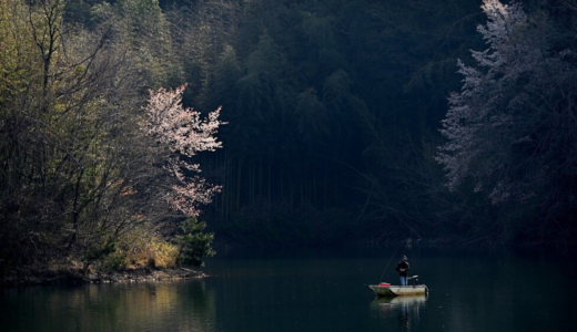 桜と3月11日/映画『Fukushima50』