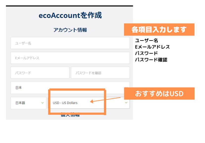 ecoPayzアカウント開設画面の画像