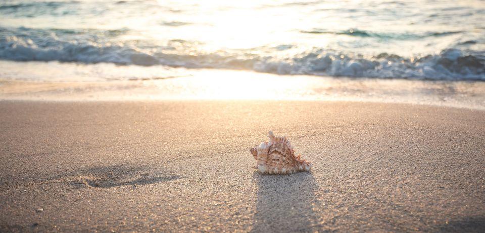終身雇用が終わったイメージの海の写真